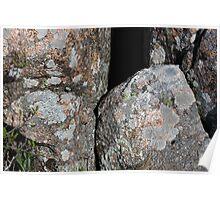 Acadia Granite 21 Poster