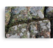 Acadia Granite 23 Canvas Print