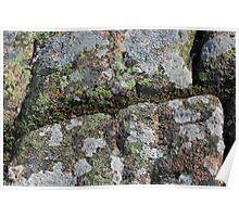Acadia Granite 23 Poster