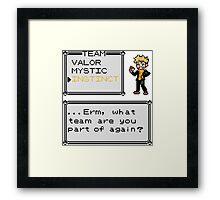Team Instinct - Pokemon Framed Print