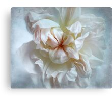 In Obscurity Canvas Print