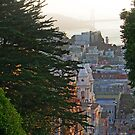 A View From Russian Hill by David Denny