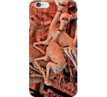 Herbs, Potions, Brews, and Witch's Ware iPhone Case/Skin