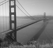 Summer in San Francisco by larryalexander