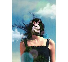 Wonderland Photographic Print