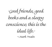 Good Friends, Good Books & A Sleepy Conscience by Amantine
