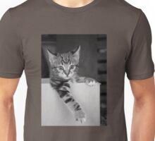 Kitten in a box 3 Unisex T-Shirt