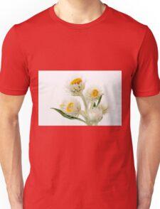 Helichrysium Elatum - White Paper Daisy Unisex T-Shirt