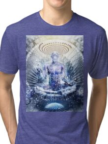 Awake Could Be So Beautiful, 2011 Tri-blend T-Shirt