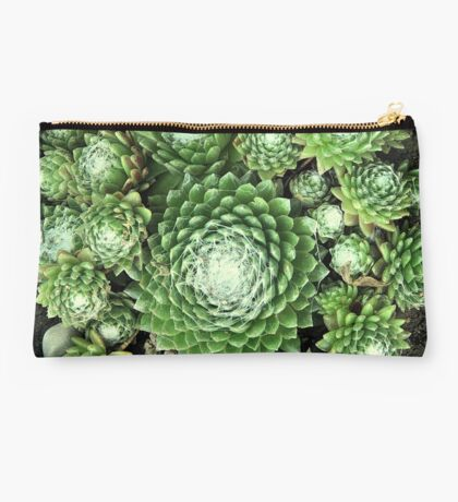 Little Succulents - Terrarium Studio Pouch