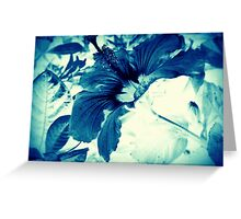 Vintage Blue Hibiscus Greeting Card