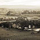 Old Railway Bridge, Dusk—Bushy Park, Tasmania by Brett Rogers