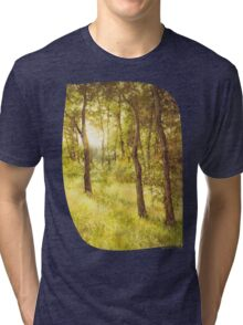 Sun Embraced Trees Tri-blend T-Shirt
