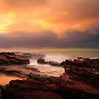 North West Tasmania by Angelika  Vogel