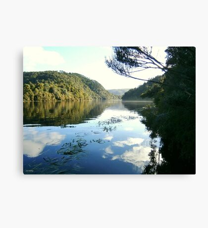 Reflecting on The Pieman Canvas Print