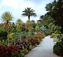 Abbey Gardens, Tresco by RedHillDigital