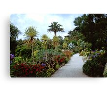 Abbey Gardens, Tresco Canvas Print