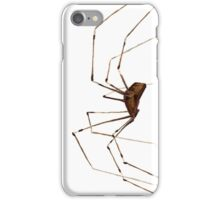 Spider! iPhone Case/Skin