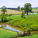 Potato Farming, Thorpdale, Victoria. by johnrf