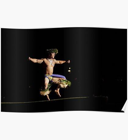 Hawaiian Hula Dancer Poster