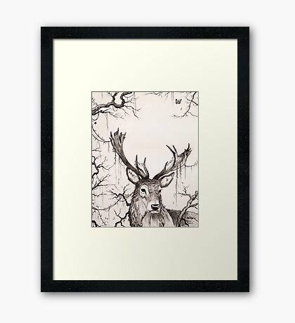 Within The Sleeping Forest  Framed Print