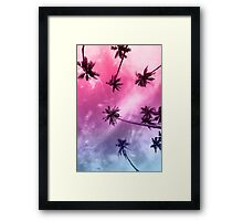 Miami Palms Framed Print