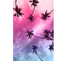 Miami Palms Photographic Print
