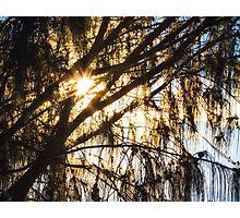 Dawn Sunlight Burst Photographic Print