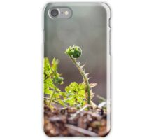 Ferns in Woodland iPhone Case/Skin