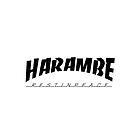 Harambe Thrasher 2016 by fashionbunkz