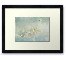 Seagull Sonata Framed Print