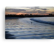 Shimmering Shore - Griffiths Island Canvas Print