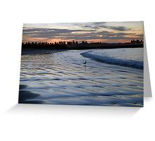 Shimmering Shore - Griffiths Island Greeting Card