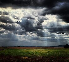 Sunrays, Dalby, QLD by MattLawson