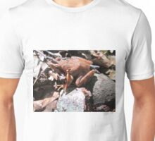 Rana italica 1 Unisex T-Shirt
