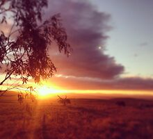 Sunset split, COOMA, NSW by MattLawsonPhoto Charity Page