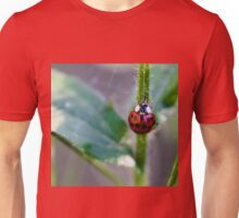 Ladybug Climbing up a Stem Unisex T-Shirt