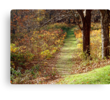 FOLLOWING THE BEATEN PATH Canvas Print