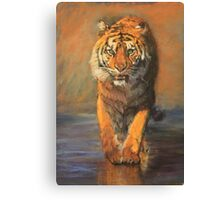 Tiger (Beach Vacation) Canvas Print