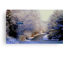 Winter Whirl  ^ Canvas Print