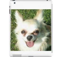 Chester Chi iPad Case/Skin