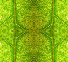 Macro Leaf No 4 Sticker