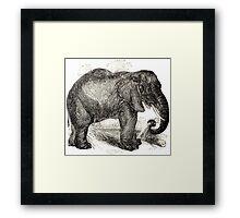 Vintage Elephant Illustration (1891) Framed Print