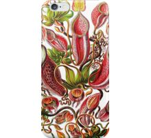 Plants & Animals, carnivorous, pitcher plants, tropical, Nepenthes, psychedelic, art, illustration, haeckel,  iPhone Case/Skin