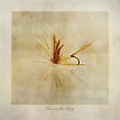 Greenwells Glory by John Edwards
