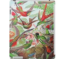 Plants & Animals, humming bird, rainforest, hummingbirds, psychedelic, art, illustration, haeckel,  iPad Case/Skin