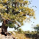 Charnwood Forest Watercolour by John Edwards