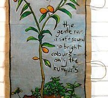 kumquat by Evelyn Bach