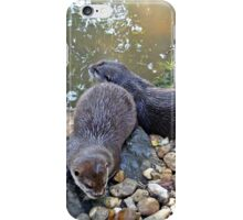Otter twins iPhone Case/Skin