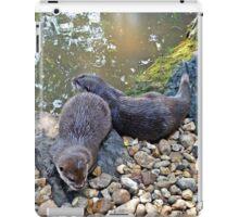 Otter twins iPad Case/Skin